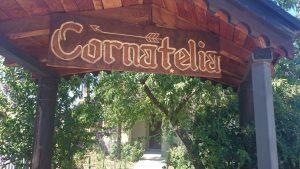 Entry Cor